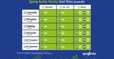 Getting the best start for spring barley