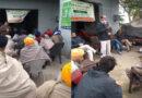 Grow Turmeric For Domestic Consumption: PAU Urges Farmers