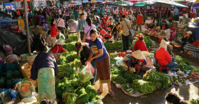 UN Food Systems Summit brief calls for global increase in consumption of fruits and vegetables