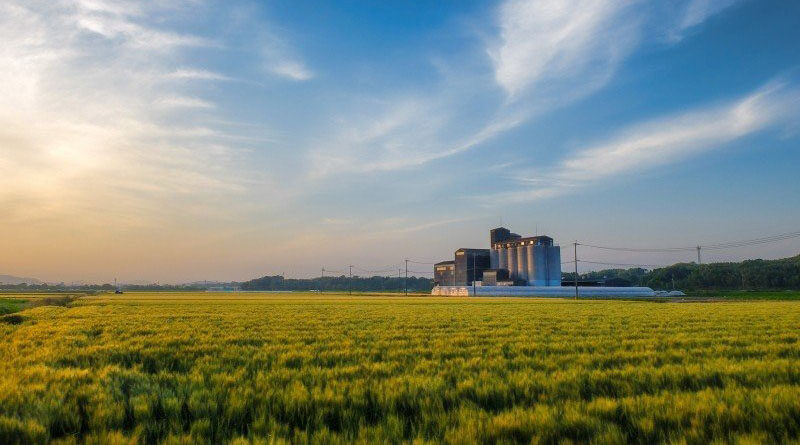Madhya Pradesh government will pay 100% of crop insurance premium