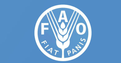 Global food trade is buoyant, as are prices: FAO
