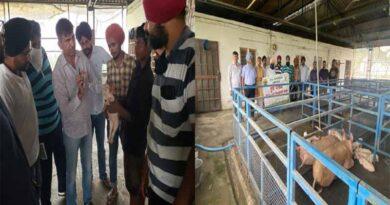 Vocational Training Course on Pig Farming at KVK, Fatehgarh Sahib