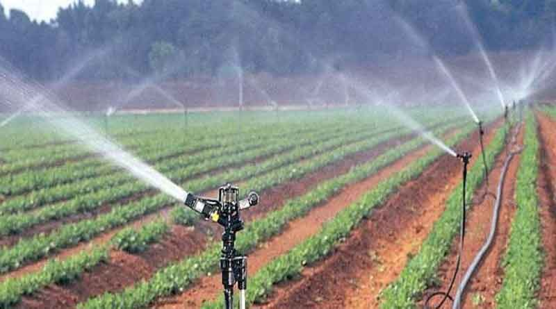 Drip and sprinkler targets released, MP farmers can apply from 7 to 18 July