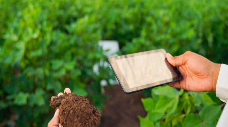 Smartphone cameras offer smallholder farmers promising new access to soil health knowledge