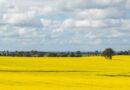 Community Builders Grow FBN®'s Presence in Australia