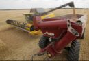 Global Glyphosate shortage: Experts blame Covid-19 Pandemic and Logistics
