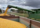 Track and Manage Crop Marketing Activities with FBN® Profit Center