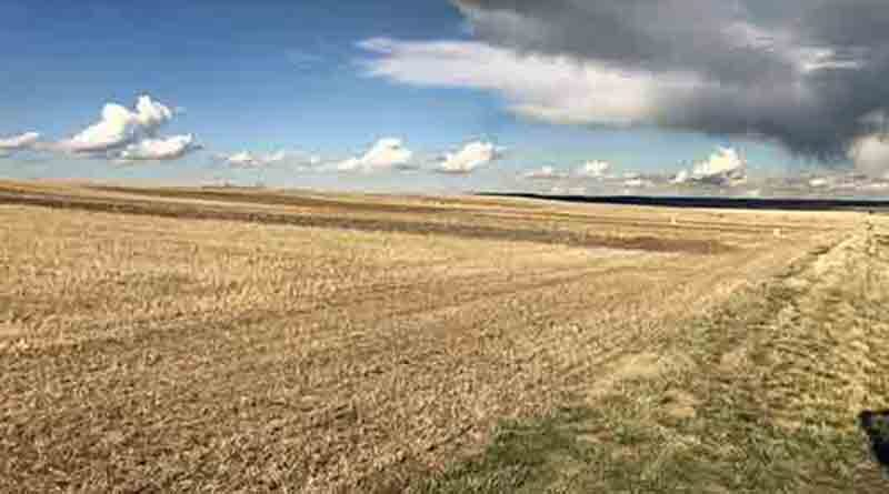 Scientists Evaluate and Refine A Simple Economic Method to Measure Soil Health in Dryland Farming