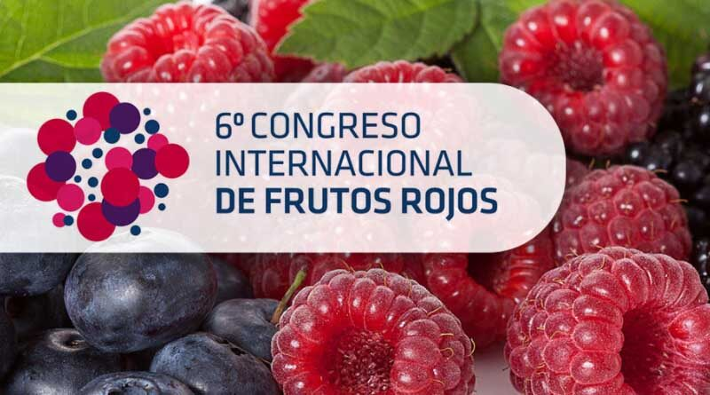 Seipasa is set to present its Radisei root biostimulant at the Berry Fruit Congress in Huelva