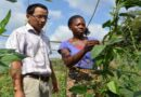 Voices of the Global South for cooperation towards agrifood systems transformation