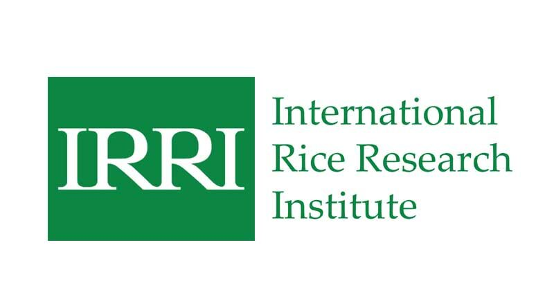 Increasing prosperity of small and marginal farmers calls for strong collaboration between IRRI, ICAR, and national research partners