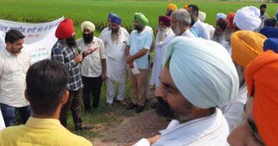 Field day on tar wattar direct seeded rice - a novel technique