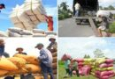 Agriculture sector ready to resume production