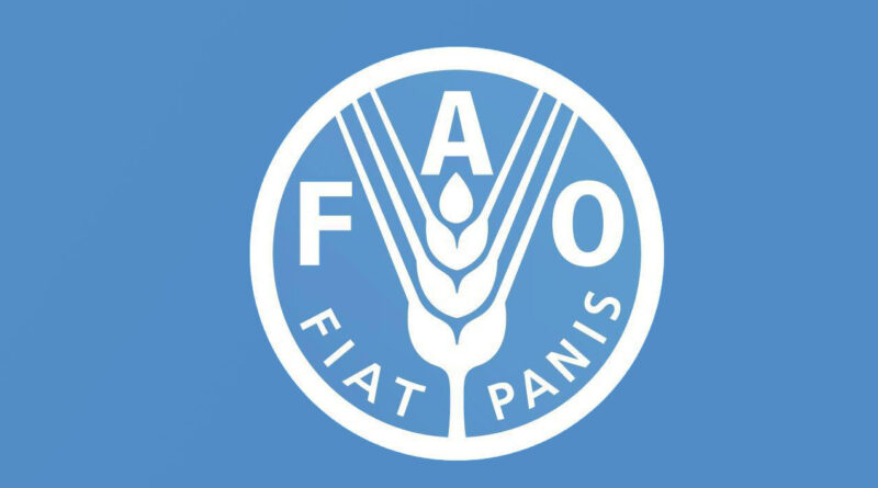 FAO, WFP and EU discuss heading off food crises before they strike