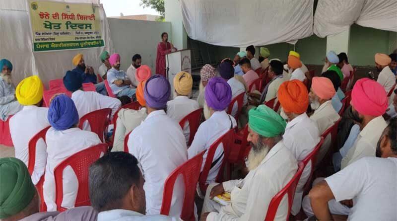 Field day on TAR WATTAR direct seeded rice organised at Faridkot