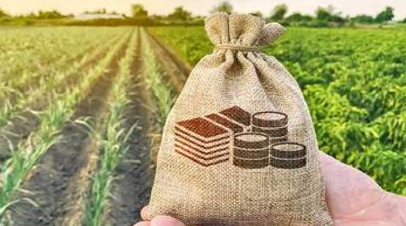 Samunnati launches new scheme to crowdsource funds to cover small farmers' risks